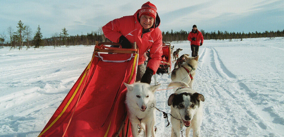 Husky sledging in Lappland!